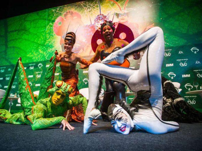 Polo Vale Decor e o espetáculo mais brasileiro do Cirque Du Soleil